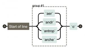 ^(aer andr antrop arche)o